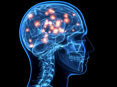 web brain getty c dontuseagain1 e1452845830948 - Scientists Claim Human Brain May Have Reached Its Full Capacity
