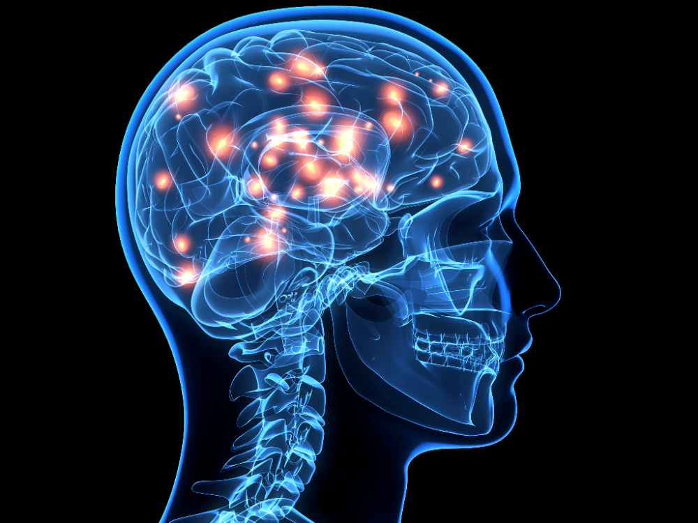 web brain getty c dontuseagain1 - Scientists Claim Human Brain May Have Reached Its Full Capacity