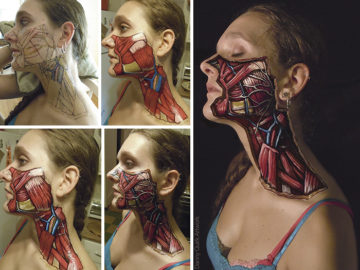 anatomical-body-paintings-danny-quirk-17-58b7ce2ddb175__700