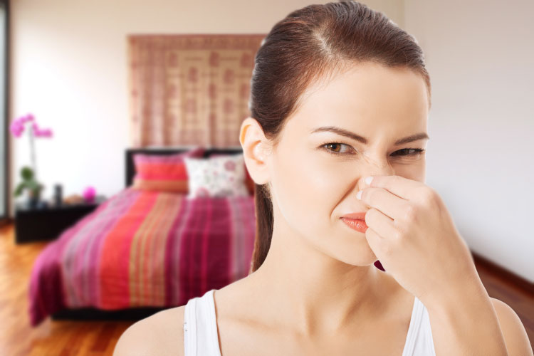 Bad smell in bedroom woman holding her nose - Couples That Farts Together Always Stays Together