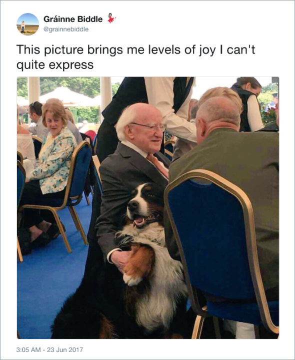Michael D Higgins Is The Best President For Ireland